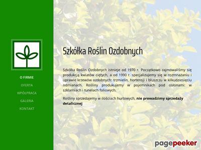 """Szkółka roślin ozdobnych """"Trzmielina"""""""