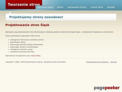 Tworzenie stron Śląsk