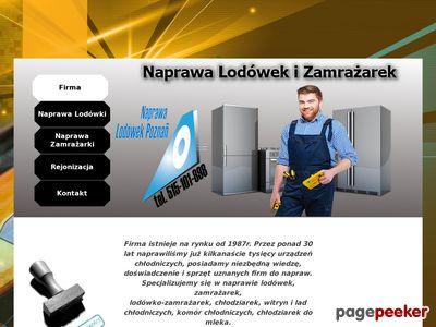 Serwis i naprawa lodówek Poznań