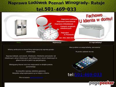 Serwis lodówek Poznań
