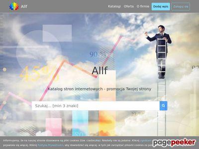 Audyt, tworzenie stron internetowych Allf