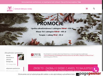 Kwas Hialuronowy, Mezoterapia igłowa - Anies - Poznań