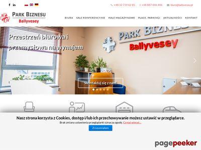 Ballyvesey - lokale biurowe do wynajęcia Rybnik, Śląsk