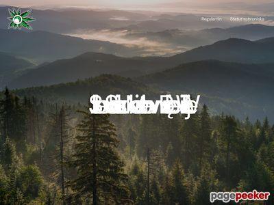 Zielone szkoły w Porębie Wielkiej - DWDZ