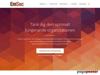 Skärmdump av emsec.se
