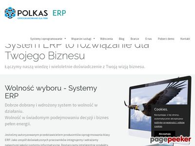 System erp