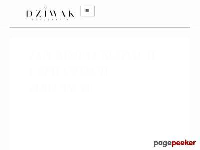 Fotodziwaki - Fotografia Ślubna