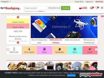 Aukcje internetowe