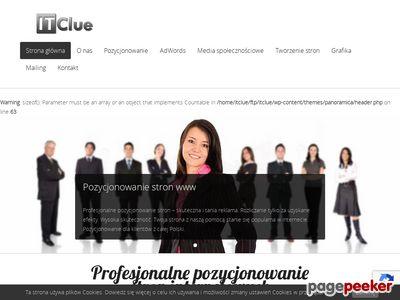 Pozycjonowanie Gniezno - IT Clue