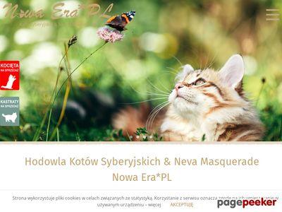 Hodowla Kotów Syberyjskich i Neva Masquerqde Nowa Era*PL