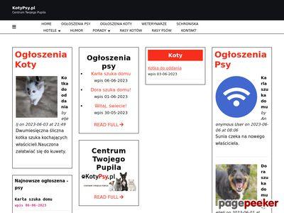 Portal KotyPsy.pl