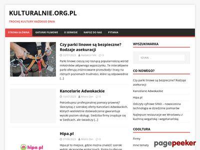 Portal o kulturze, literaturze i sztuce