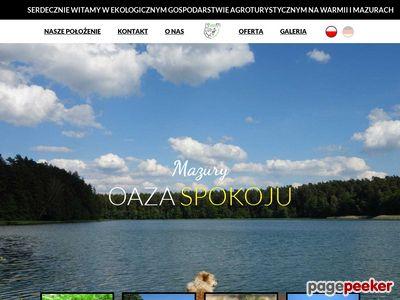 Www.lesnejezioro.pl : wędkarstwo na Mazurach