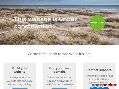 Skärmdump av letfab.se
