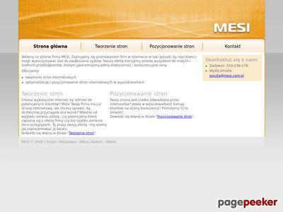 Tworzenie i pozycjonowanie stron - MESI