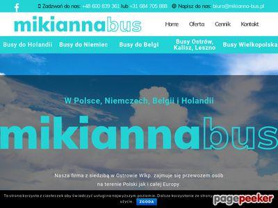 MIKIANNA-BUS Duże busy Ford Transit -Wielkopolska,Lubuskie, Dolny Śląski,Łódzkie