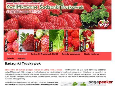 Truskawki doniczkowe i frigo - Top Plant