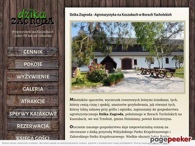 Agroturystyka Bory Tucholskie