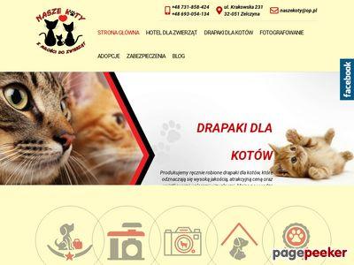 Hotel dla kota w Krakowie opinie