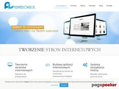 Strony Internetowe Łódź - Piotr Lewandowski