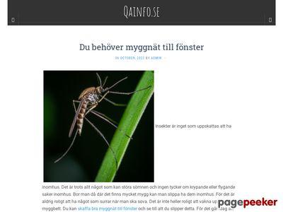 Skärmdump av qainfo.se