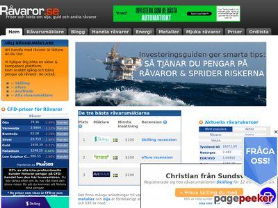 Skärmdump av ravaror.se