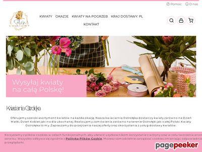 Kwiaty Ostrołęka