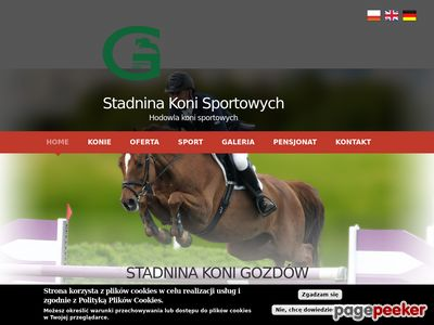 Skokowe konie sportowe - skgozdow.pl