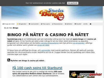 Skärmdump av spelabingo.org