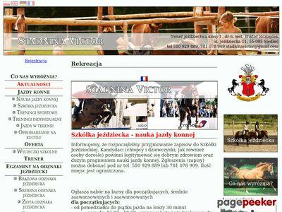 Stadnina koni - www.stadninavictor.pl