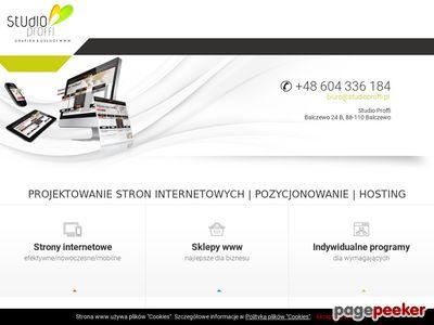 Studio Proffi - projektowanie stron www
