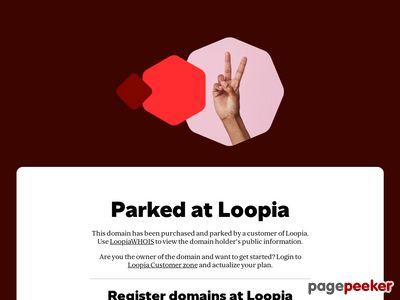 Skärmdump av terminus.se