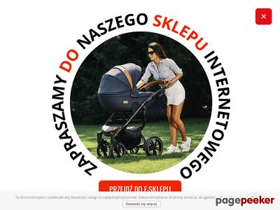 Firma Tutek Producent Wózków Dziecięcych