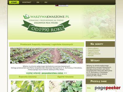 Producent ogórków kiszonych i kapusty kiszonej