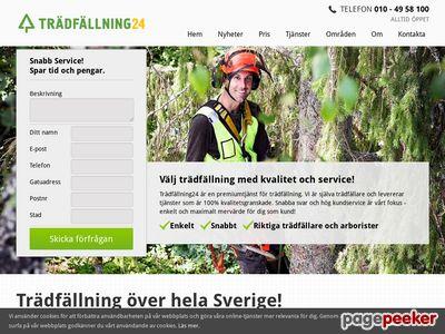 Skärmdump av xn--trdfllning24-hcbc.se