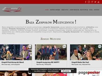 Zespoły Muzyczne Mirex - Agencja