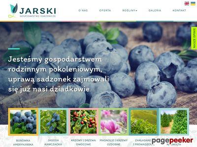 Zielonykrzaczek.pl - hurtownia sadzonek