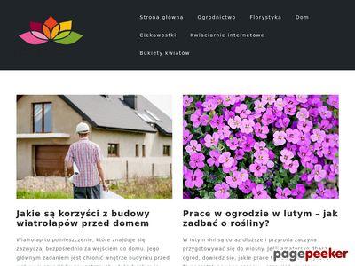 Kwiatolinia.pl, Kwiaciarnia internetowa, wysyłki kwiatów