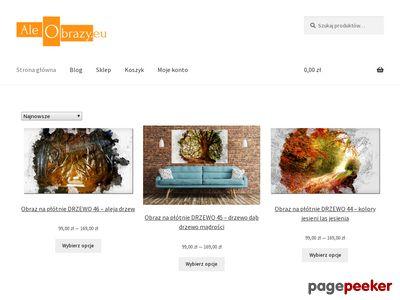 Aleobrazy.eu - Obrazy nowoczesne