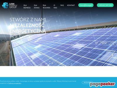 Lion Energy Group energia odnawialna