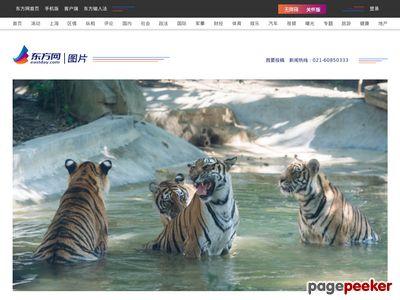 MSN中国-图片频道