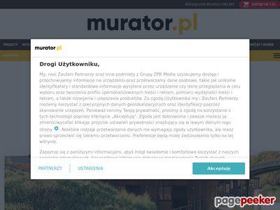 Murator-budowa domu
