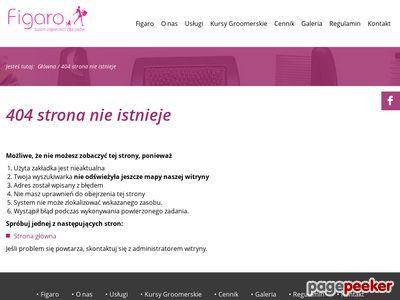 www.figaro-salon.com.pl
