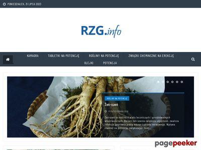 Rzg.info.pl