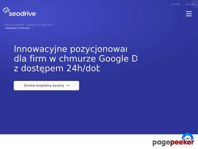 Agencja SEO - Seodrive.pl