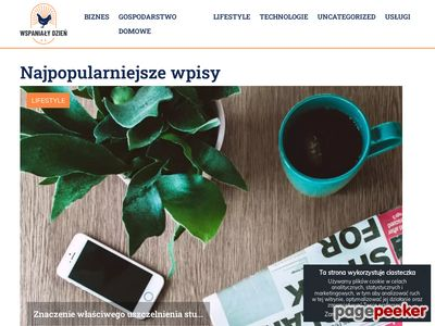 Katalog WspanialyDzien.pl - BM