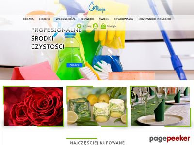 Środki czystości - maja2010.pl
