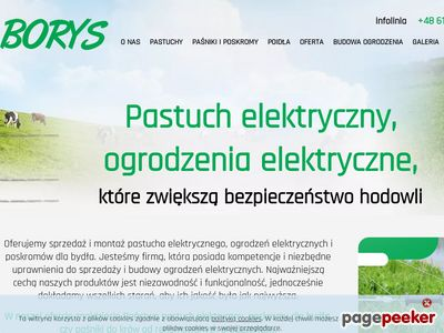 Elektroniczny pastuch - pastuchyborys.pl