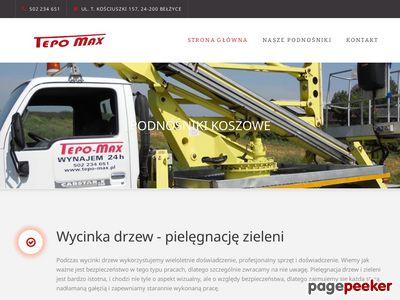 Wycinka drzew - tepo-max.pl