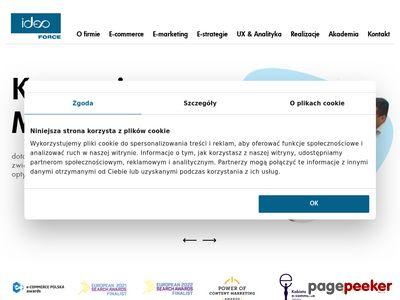 Ekspert e-marketing